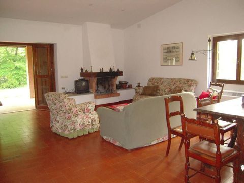Incredible tourist apartment with 3 rooms - 2493654