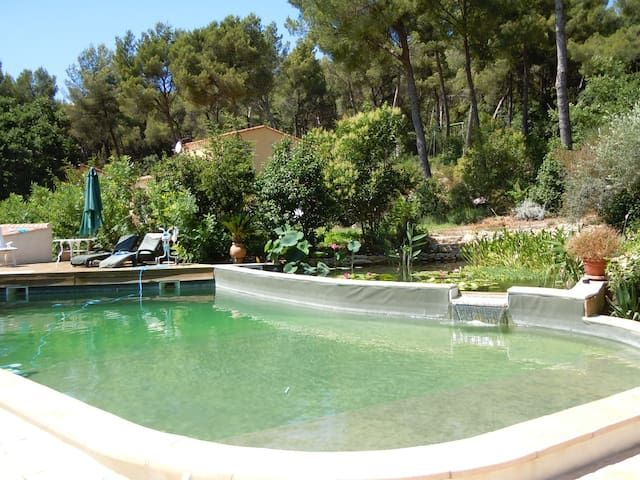 Pretty one-bedroomed flat , pool,  20 mins beaches