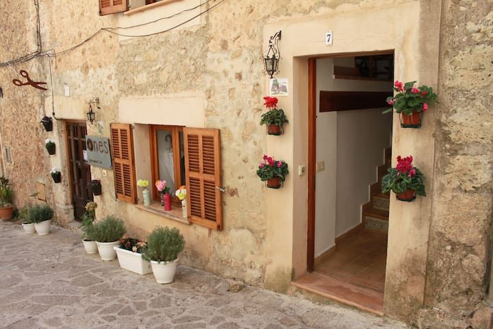 APARTMENT WITH A PRIVATE TERRACE IN VALLDEMOSSA