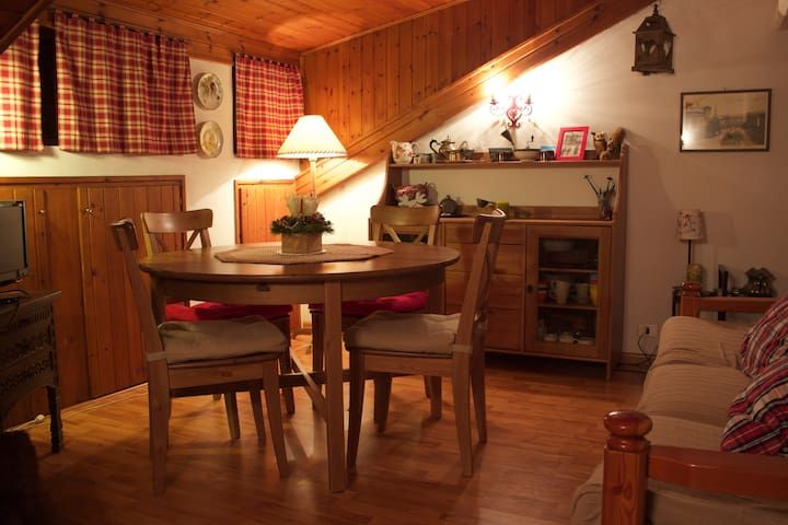 Cozy, quite apt with private access to ski slope!