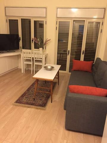 1 br apt. A walk to the beach TLV