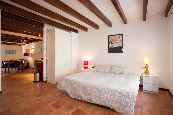 Old town fully renovated apartment