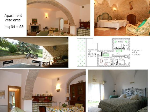 bed & breakfast: Agriturismo Il Palmarone