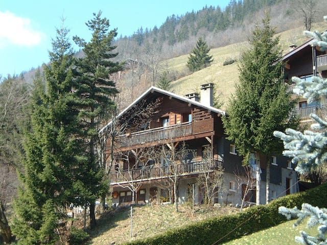 Apartment in Le Grand-Bornand with Parking (588423)