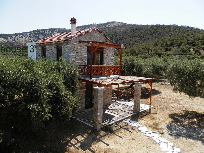 new Stone house, in an olive groove, quite place,