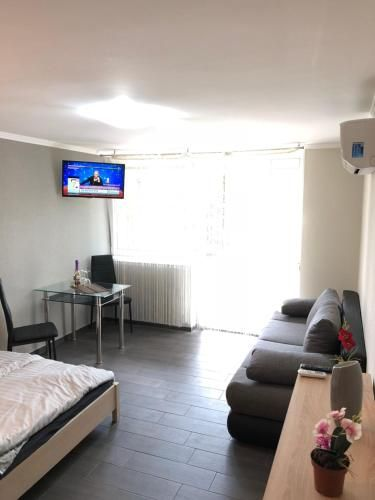 Appartement pet-friendly à 1 chambre